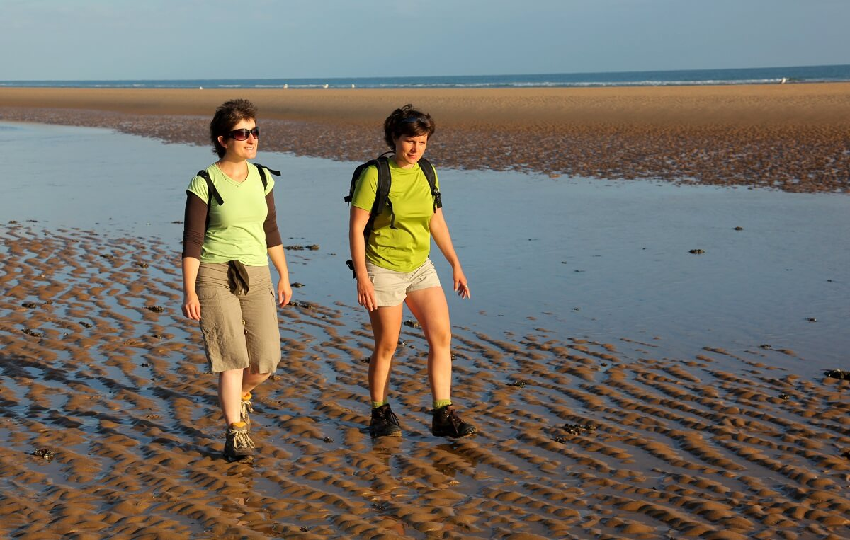 hiking by the sea, walking, walking tour, hiking path, trail, walking route, normandy, calvados, discovering the fauna and flora